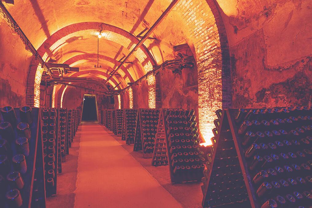 Champagne Guide - Cellar