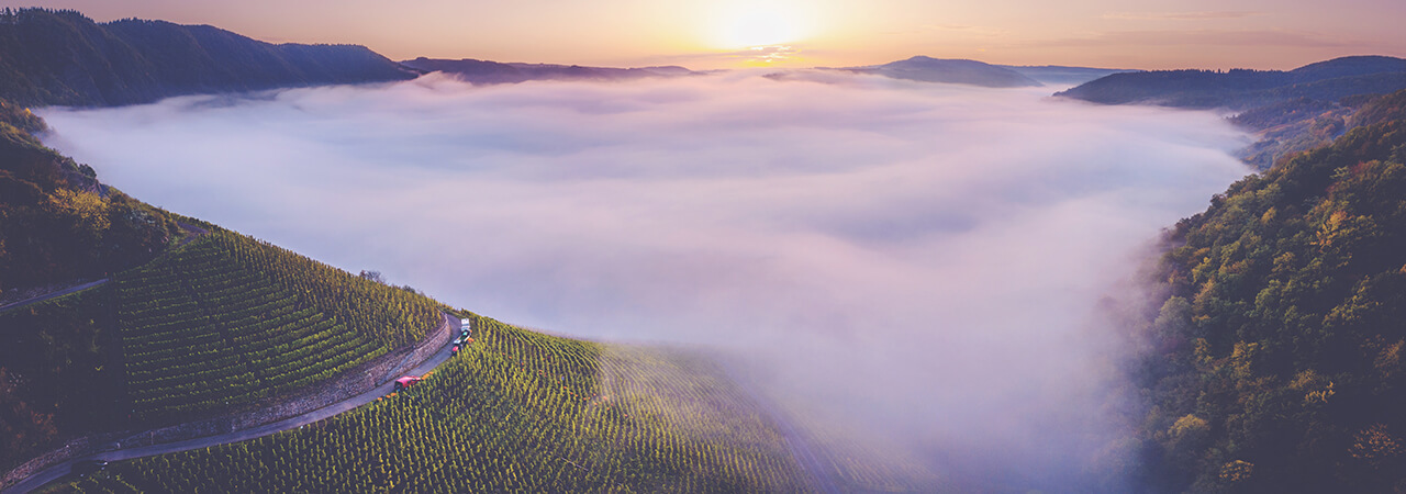 Guide to German Wine - Aerial view