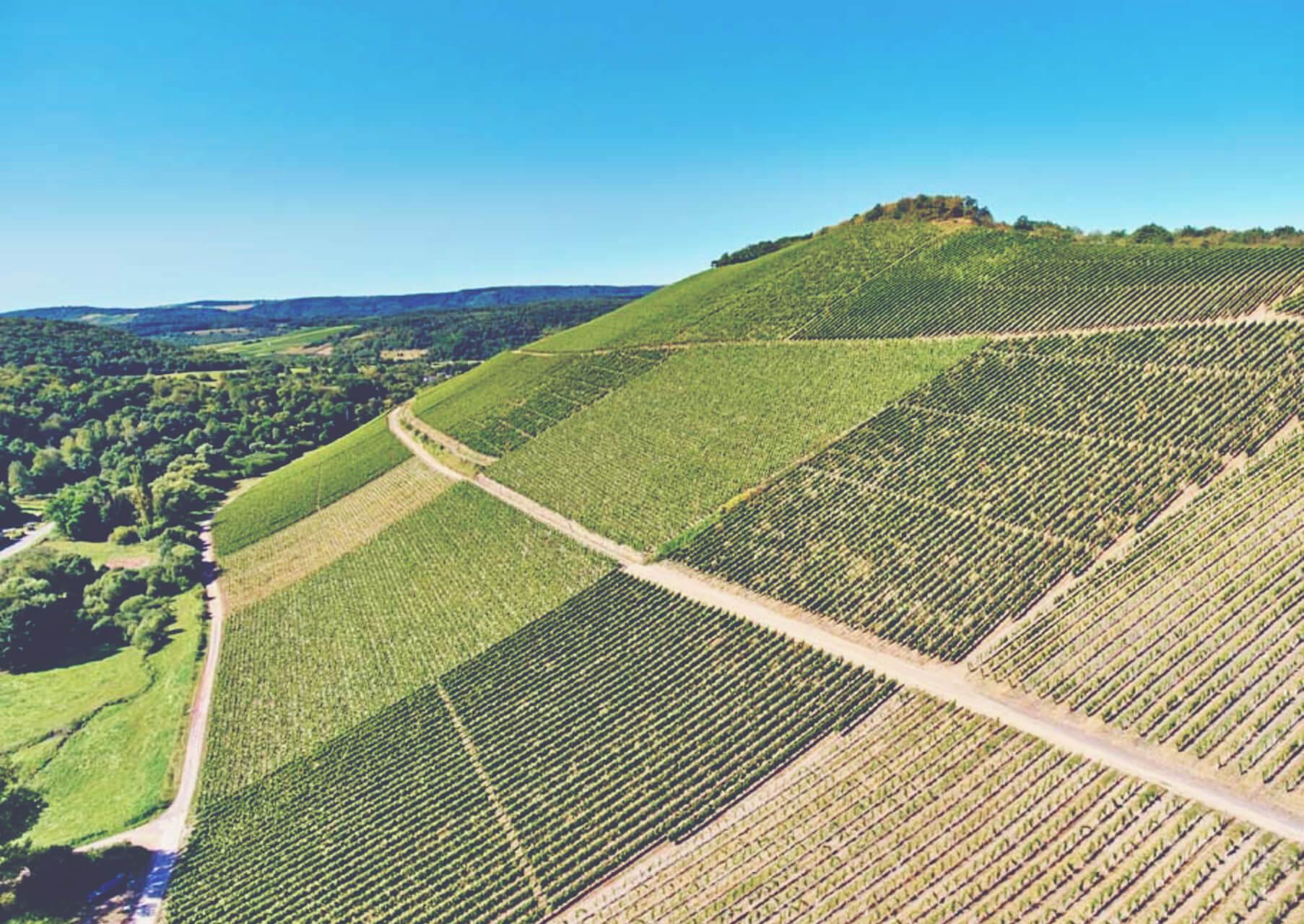 Guide to German Wine - Vineyard slopes