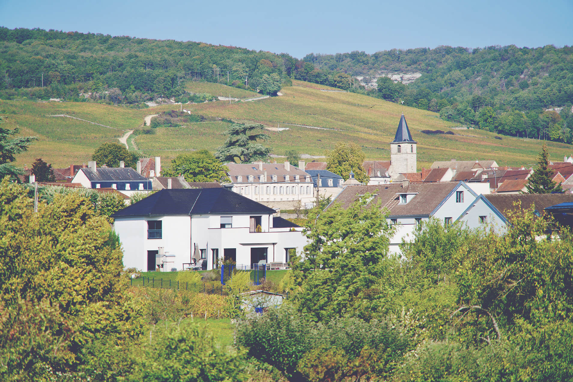 A Guide to Red Burgundy - Town