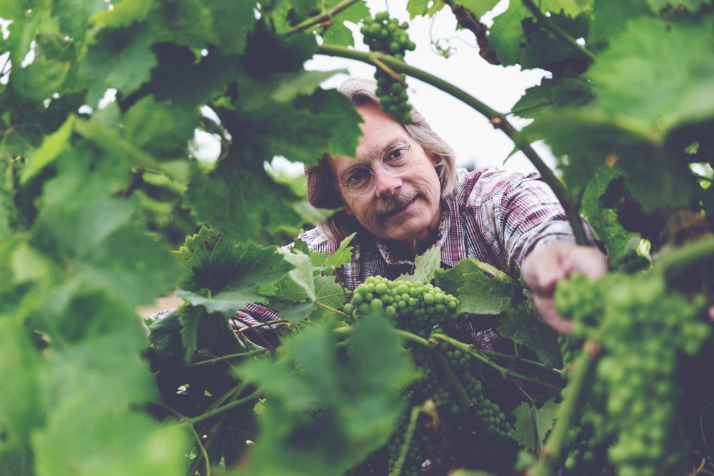 Bob Cabral Wines - Bob in the vineyard
