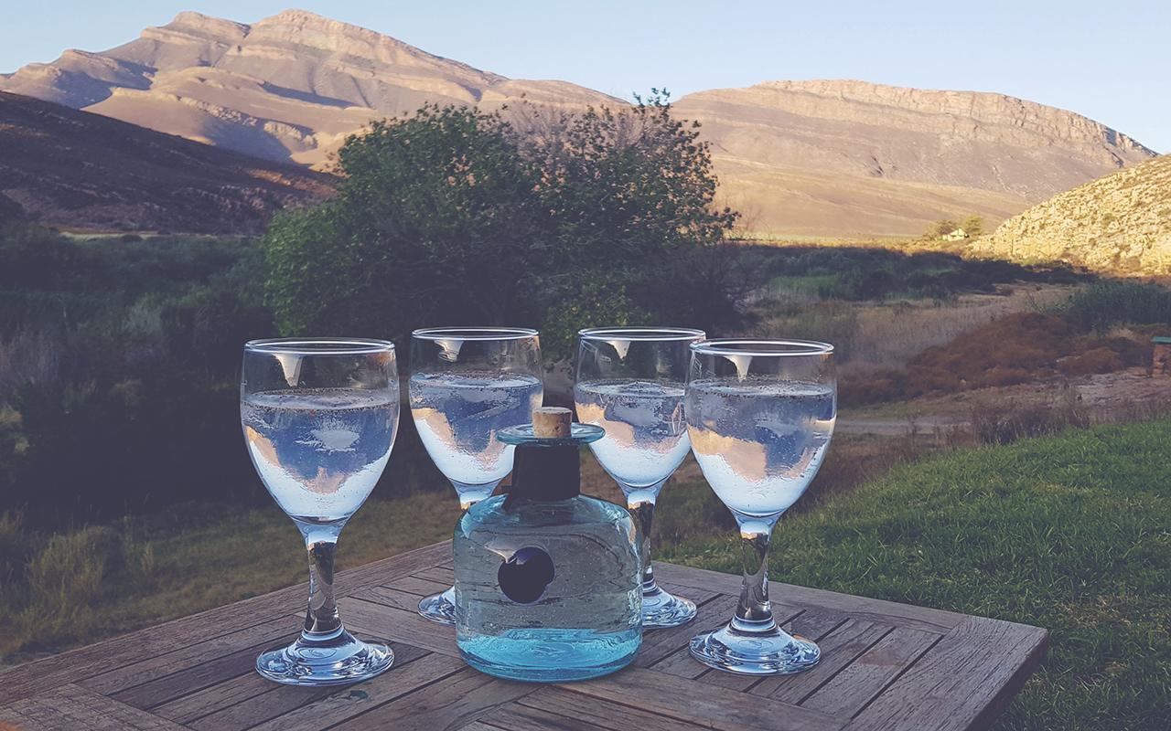 Procera Gin & Tonics