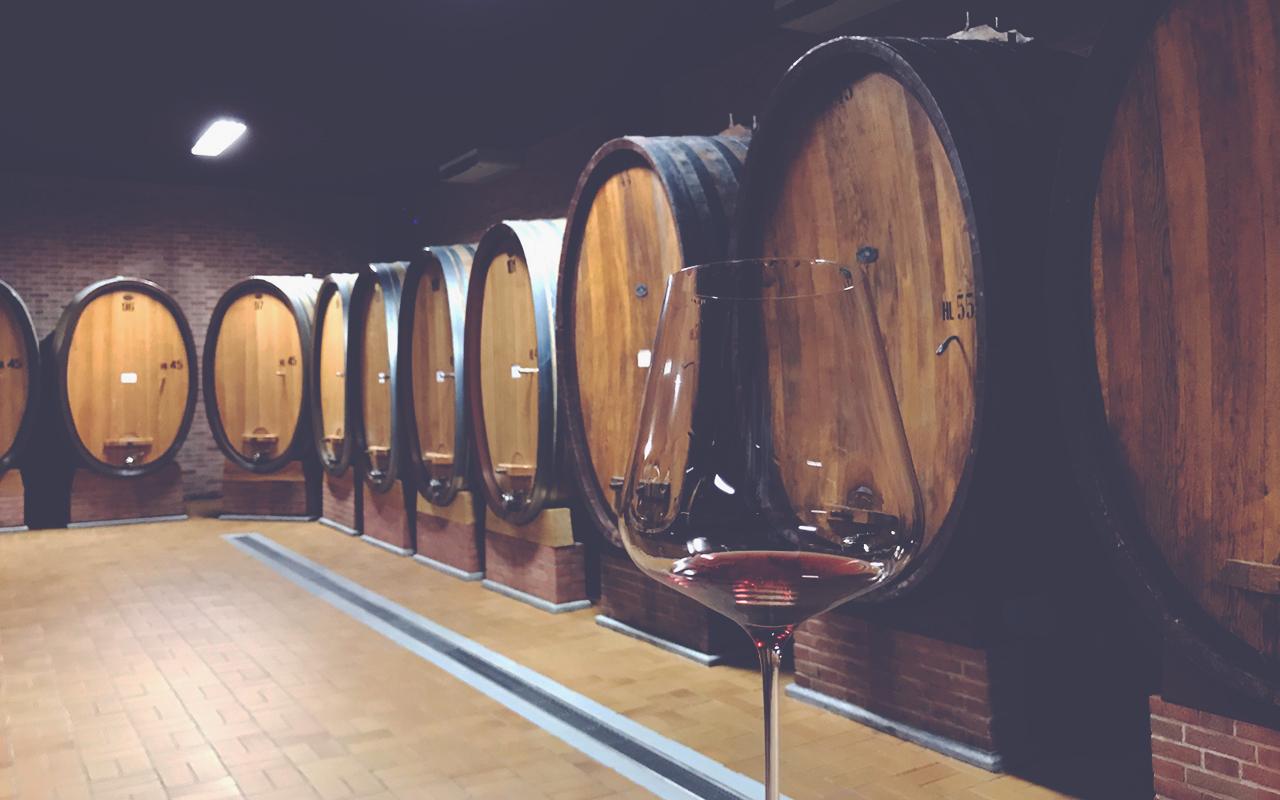 Camilla Coletto Wine Cellar