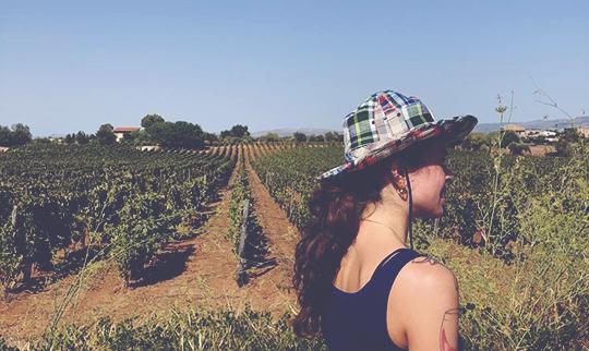 Camilla in Sicily Arianna Occhipinti vineyards 540x322