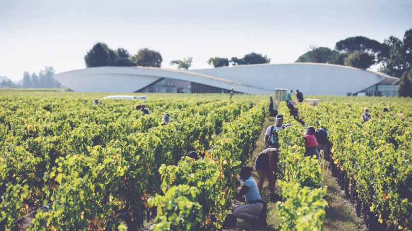 Cheval Blanc 2020