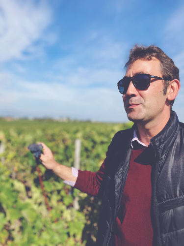 An interview with Frédéric Faye, Technical Director at Château Figeac
